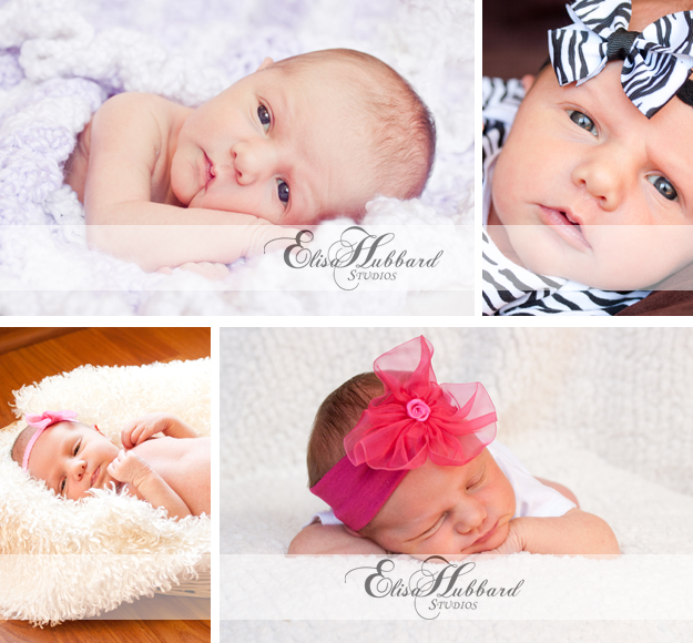 Madelyn, Baby Girl, Baby Photography, Newborn Photography, Elisa Hubbard Studios